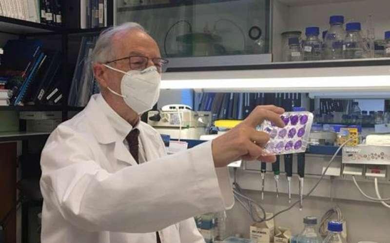 El virólogo Luis Enjuanes, en el Centro Nacional de Biotecnología del CSIC. / Susana de Lucas CNB-CSIC