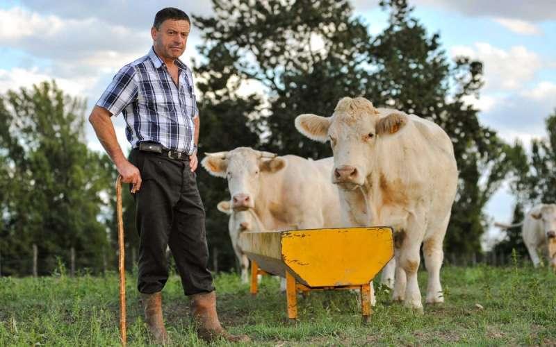 AVA-ASAJA reclama a las administraciones la puesta en marcha de campañas de promoción dirigidas a impulsar el consumo saludable de carne local en los hogares. EPDA