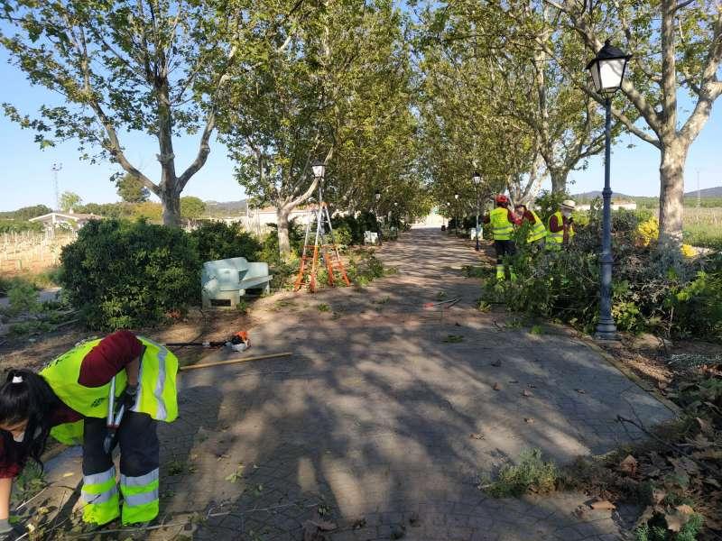 Limpieza de jardines en el Paseo de Las Casas