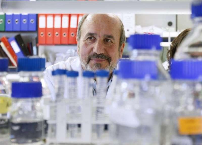 El virólogo Mariano Esteban. EFE/Gustavo Cuevas/ Archivo