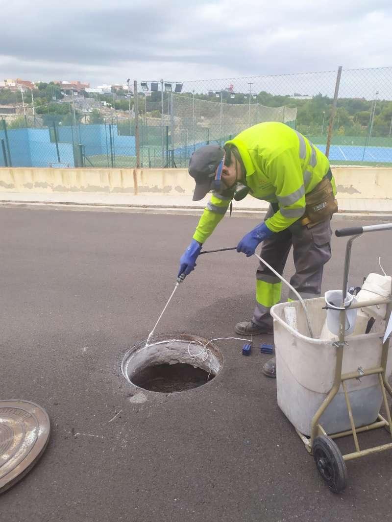 Tratamiento de plagas en Paterna. EPDA