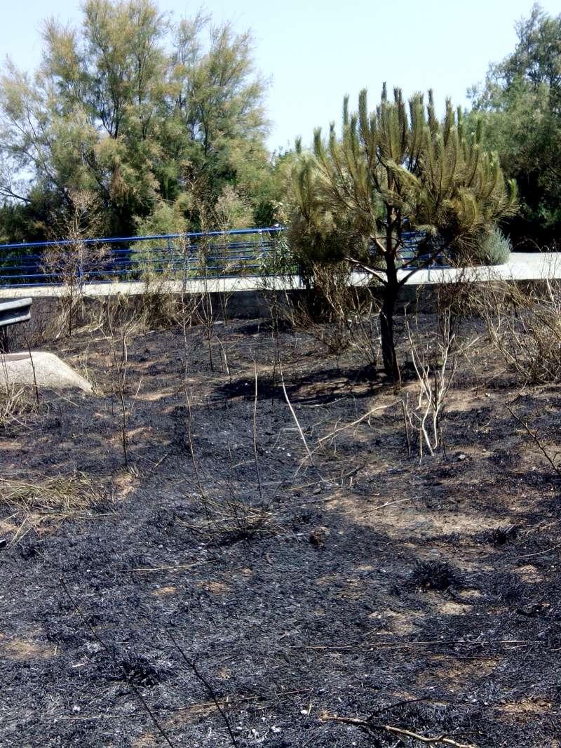 Fotografia del Barranc cremat. EPDA.