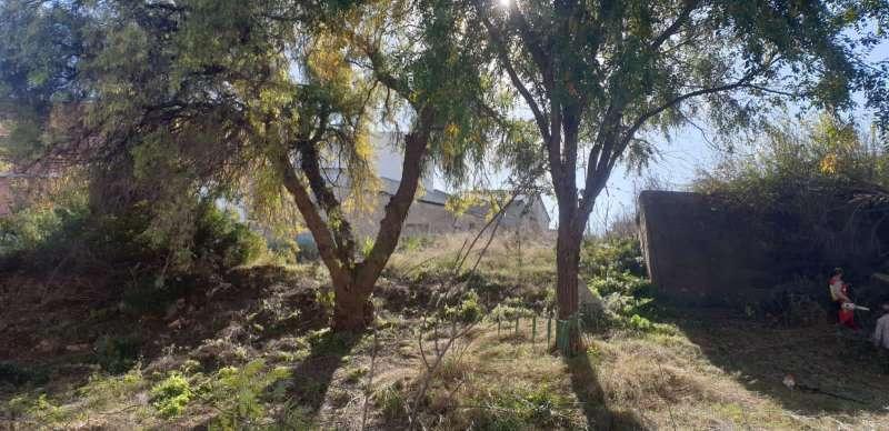 Hoy han dado comienzo los trabajos de acondicionamiento del Barranc de Teulada. EPDA.