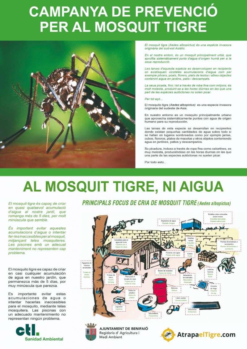 Campaña mosquito tigre Benifaió./EPDA