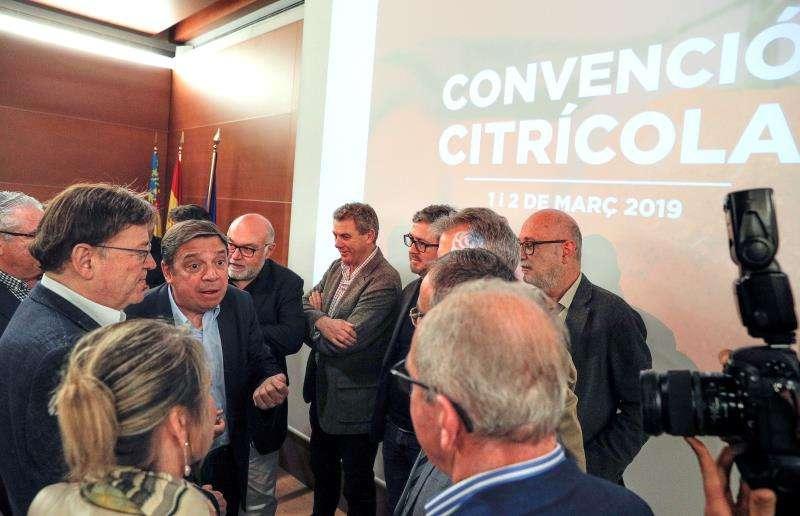El ministro de Agricultura, Luis Planas (2º izqda), y el president de la Generalitat y secretario general del PSPV-PSOE, Ximo Puig (izqda), conversan con los asistentes a la convención citrícola que han clausurado. EFE