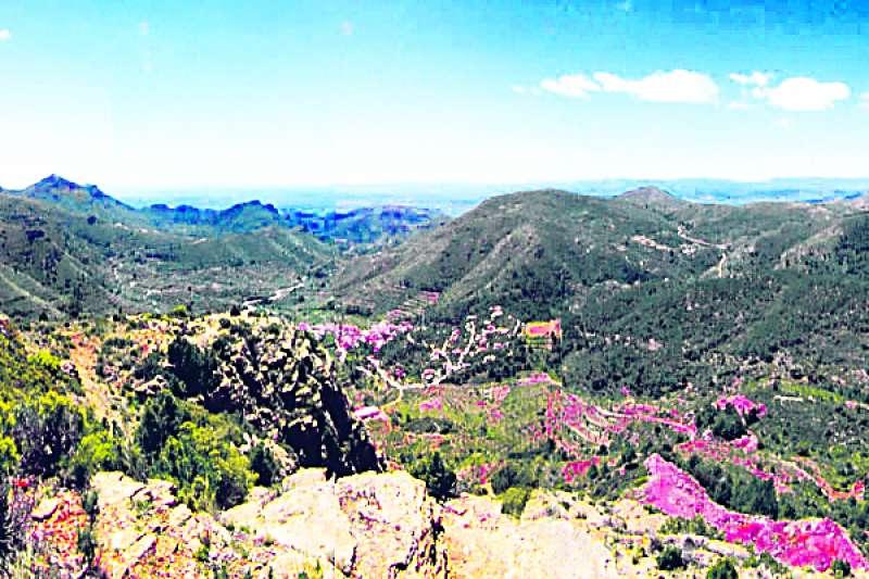 Vistes de la Serra Calderona. EPDA