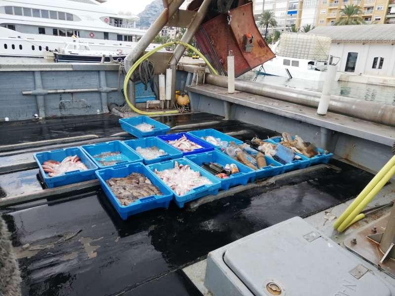 Pescado y plástico en la lonja. EPDA