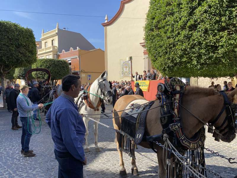 Día de Sant Antoni en Massanassa. EPDA
