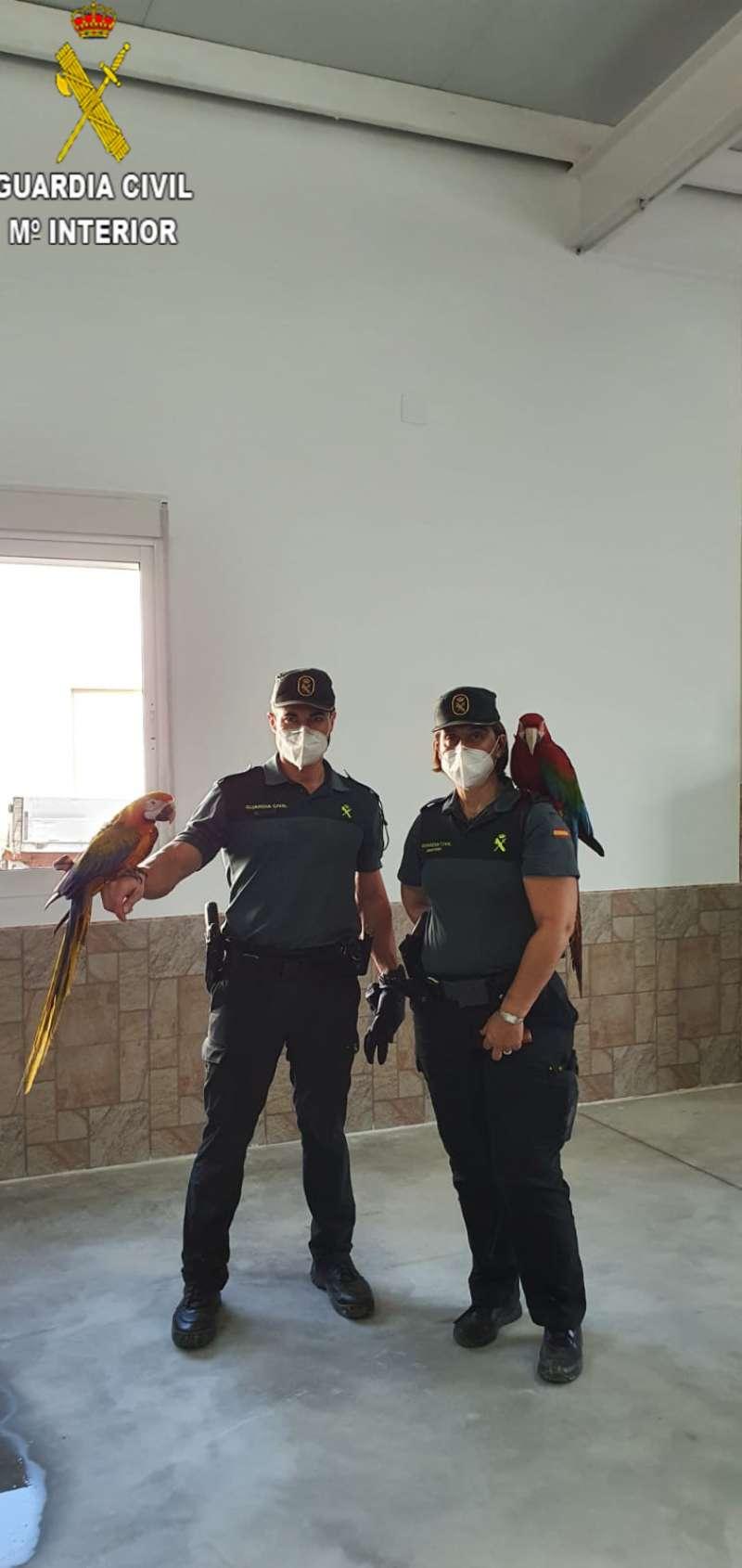 La Guardia Civil con el guacamayo. / EPDA