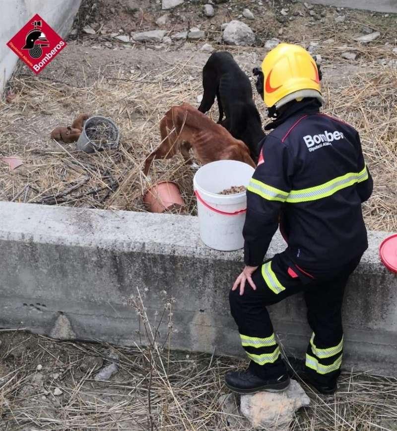 Fotos decidas por el Consorcio Provincial de Bomberos de Alicante