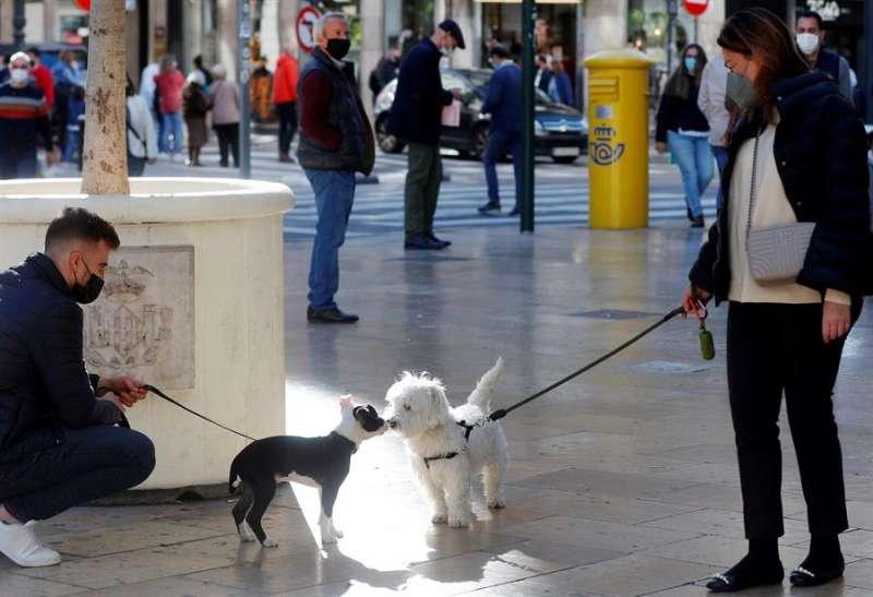 Dos perros se saludan mientras sus dueños mantienen el distanciamiento social para combatir la transmisión de la COVID-19. EFE