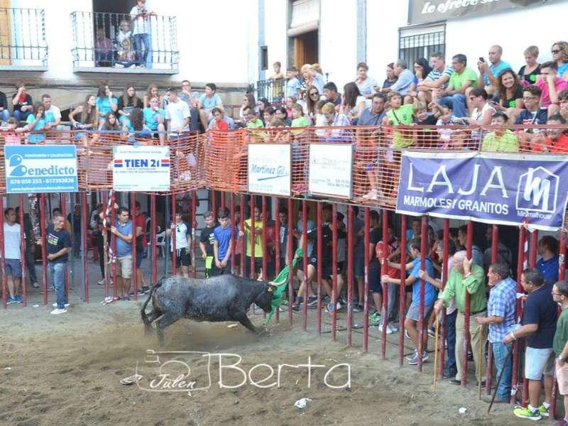 Todo apunta a que habrá toros de calle en 2022. / Foto:Berta