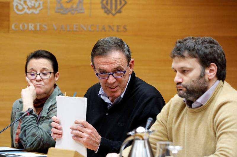 El ex secretario general del PSPV-PSOE Joan Ignasi Pla (c). EFE