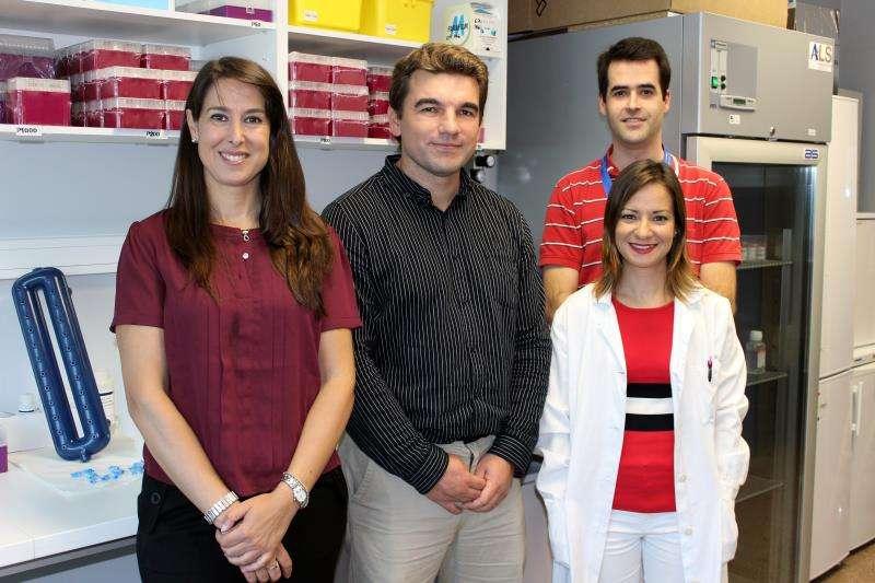 De izquierda a derecha: Teresa Valdés, CEO de Bemygene; Juan Sandoval, investigador del IIS La Fe y autor de la patente; Diana García, Unidad de Biomarcadores y Medicina de Precisión, y David Hervás, Unidad Data Science, ambos del IIS La Fe, en una imagen del centro médico. EFE