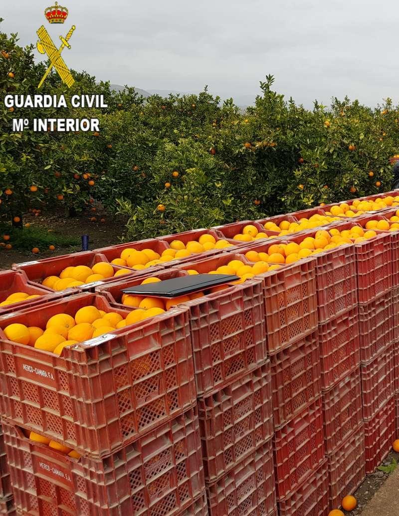 Naranjas/EPDA