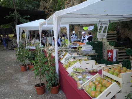 XIV Feria del Aceite y Productos Agroalimentarios en el Parque de la Floresta de Viver. FOTO: EPDA