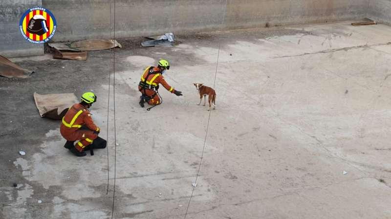 Rescat gos./EPDA