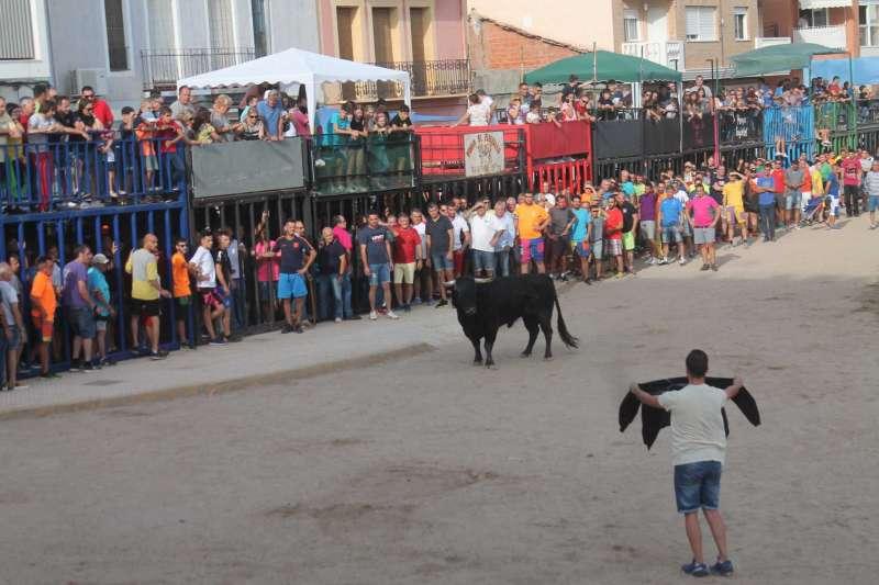 Bou per la vila, Almenara. EPDA